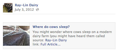 raylin-dairy-where-do-cows-sleep